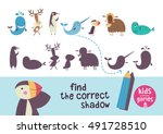 find the correct shadow. kids... | Shutterstock .eps vector #491728510