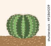 Big Round Cactus On A Sandy...