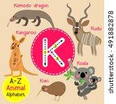 cute children zoo alphabet k... | Shutterstock .eps vector #491882878