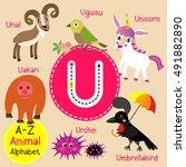 cute children zoo alphabet u... | Shutterstock .eps vector #491882890