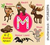 Cute Children Zoo Alphabet M...
