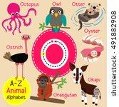 cute children zoo alphabet o... | Shutterstock .eps vector #491882908