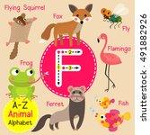 Cute Children Zoo Alphabet F...