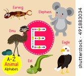 cute children zoo alphabet e... | Shutterstock .eps vector #491883034