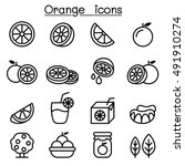 orange icon set in thin line... | Shutterstock .eps vector #491910274