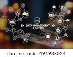 data management platform  dmp ... | Shutterstock . vector #491938024