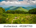 view of old rag mountain from... | Shutterstock . vector #492087703