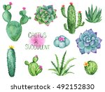 cactus and succulent watercolor ... | Shutterstock . vector #492152830