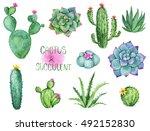 cactus and succulent watercolor ...   Shutterstock . vector #492152830