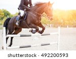 Stock photo show jumping close up image male horse rider jumping over hurdle on competition 492200593