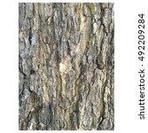 Small photo of Siras tree bark also known as Albizzia lebbek.