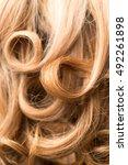 background of beautiful woman's ... | Shutterstock . vector #492261898