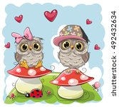 Two Cute Cartoon Owls Are...