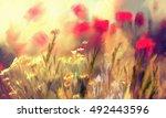 Oil Painting Abstract Autumn...