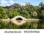 a small bridge on a lake inside ... | Shutterstock . vector #492454960