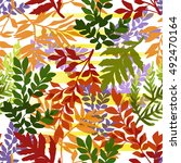 seamless pattern of autumn... | Shutterstock .eps vector #492470164