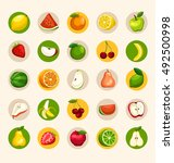 fruit festival   fruit elements ... | Shutterstock .eps vector #492500998