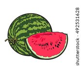 ripe and juicy watermelon ... | Shutterstock .eps vector #492531628
