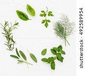 various fresh herbs from the... | Shutterstock . vector #492589954