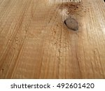 the picture shows the...   Shutterstock . vector #492601420