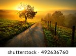 idyllic rural landscape on a... | Shutterstock . vector #492636760