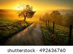 idyllic rural landscape on a... | Shutterstock . vector #492636760