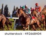 Race Horses Running Towards Th...