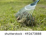 close up of rake and fallen... | Shutterstock . vector #492673888