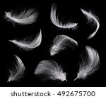 collection of white feather... | Shutterstock . vector #492675700