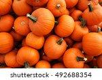 Recently Harvested Orange...
