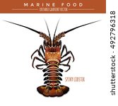 spiny lobster. marine food | Shutterstock .eps vector #492796318
