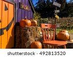 Halloween Decoration In Pumpki...