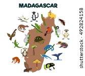 madagascar animal. various...