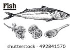 seafood. mackerel. fish and... | Shutterstock .eps vector #492841570