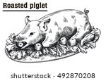 roast suckling pig. roasted... | Shutterstock .eps vector #492870208