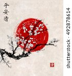 Sakura In Blossom And Red Sun ...