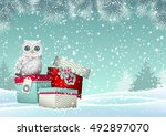 christmas theme  cute white owl ... | Shutterstock .eps vector #492897070