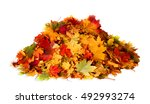 pile of autumn colored leaves... | Shutterstock . vector #492993274