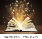 mysterious book | Shutterstock . vector #493051924