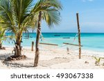 beautiful view of palm and... | Shutterstock . vector #493067338