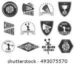 set of labels  logos for... | Shutterstock .eps vector #493075570