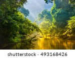 Amazing Scenic View Tropical...