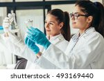 two young female geneticists... | Shutterstock . vector #493169440