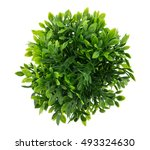 small artificial tree in a pot... | Shutterstock . vector #493324630
