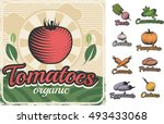 colorful vintage style poster... | Shutterstock .eps vector #493433068