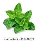 mint leaf close up on a white... | Shutterstock . vector #493448374