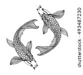 a beautiful koi carp fish... | Shutterstock .eps vector #493487230