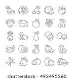 set vector line icons in flat... | Shutterstock .eps vector #493495360
