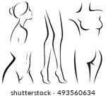 set of elements of the body of... | Shutterstock .eps vector #493560634