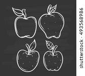 set of apple using doodle art... | Shutterstock .eps vector #493568986